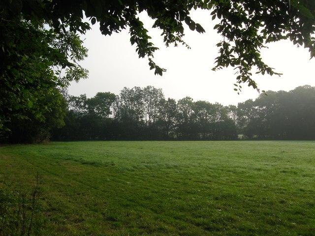 Lower Bolney Field