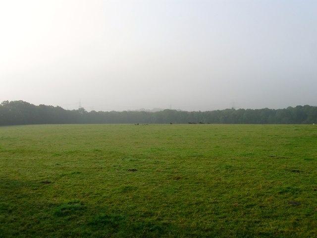 Barn Plots/Rainbow Field
