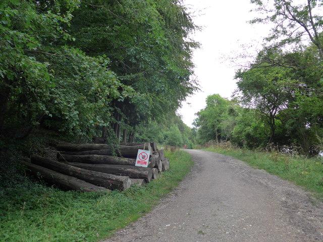 South Downs Way, Exton to Buriton (241)