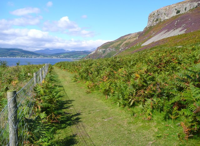 The path on Holy Isle back to the jetty