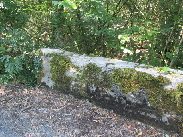 Moss Covered Bridge Parapet