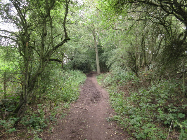 Bridleway to Fickleshole