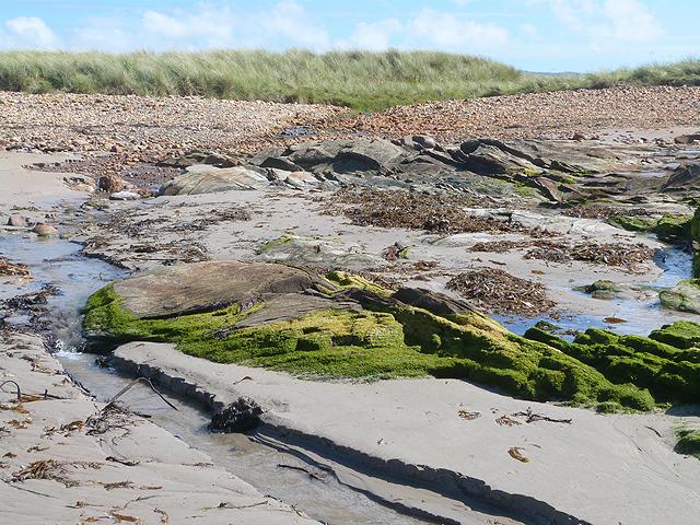 Coastal rocks at Knockangle Point