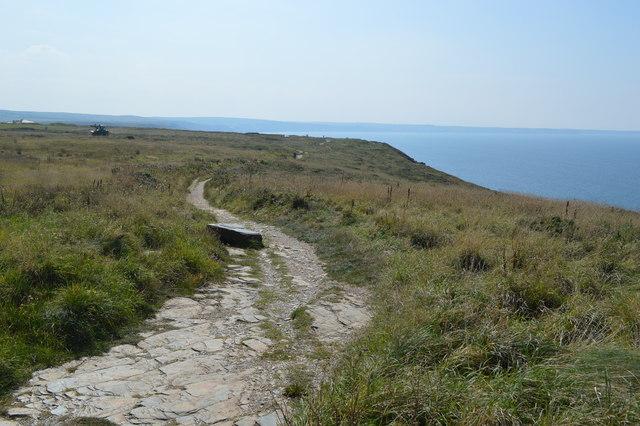 Coastal path on Glebe Cliff