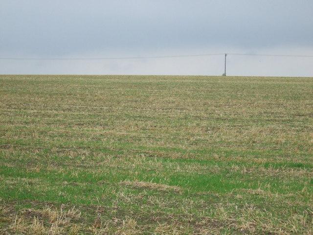 Farmland near Langworth