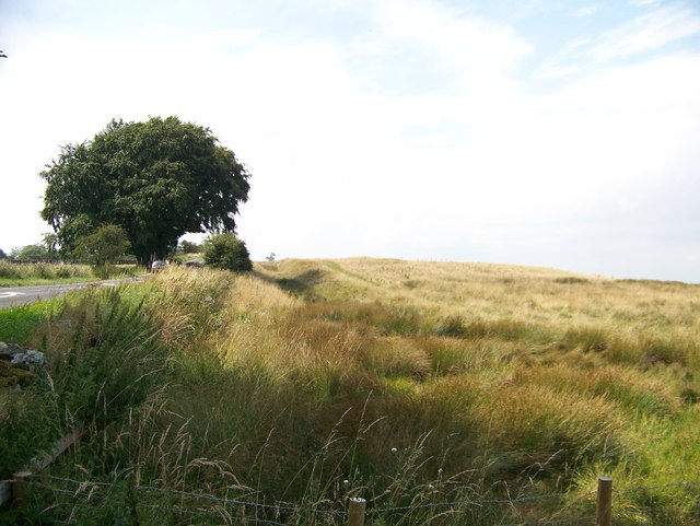 Looking west at the ditch associated with Hadrian's Wall beside the B6318