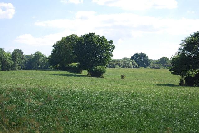 Countryside near Oast Farm