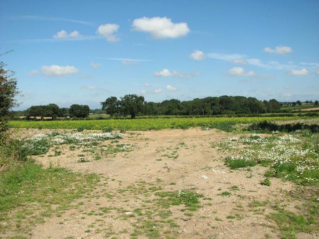 Fields by North Farm
