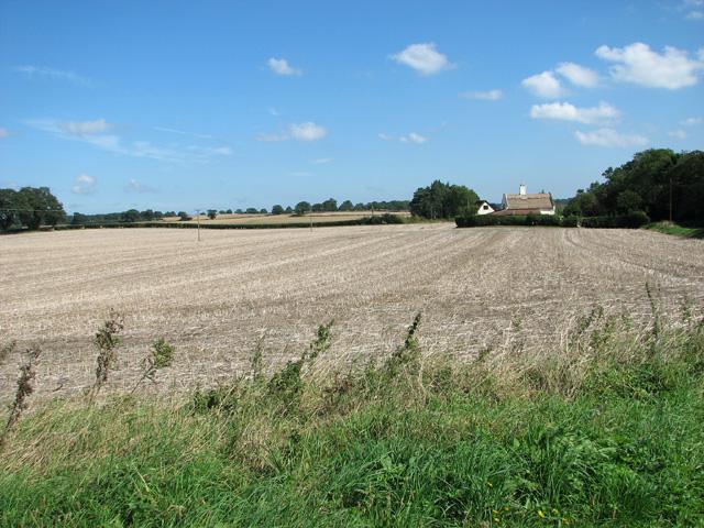 View towards Grove Farm