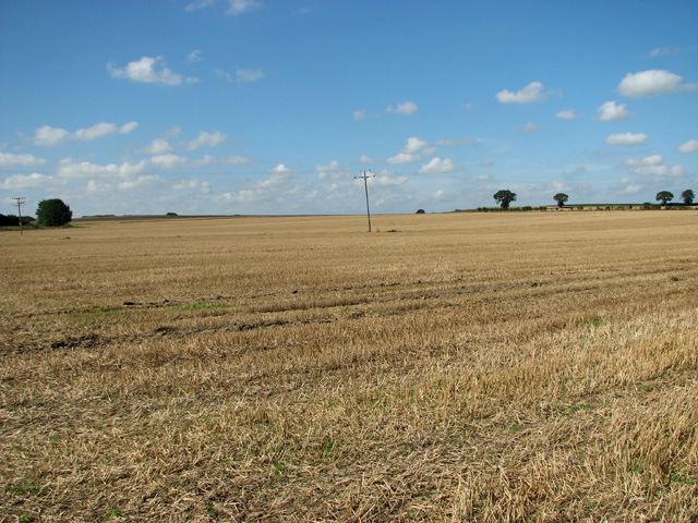 Stubble field, Skeyton