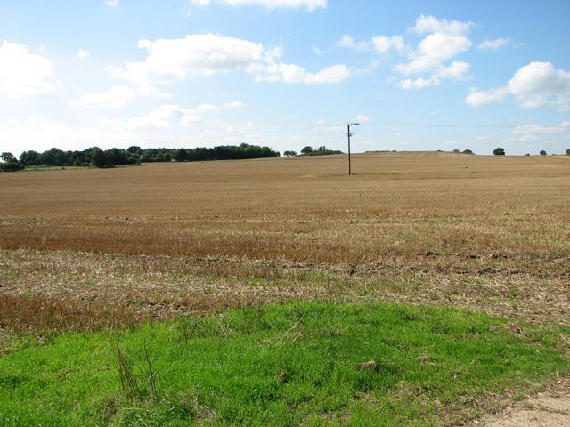 Stubble field by Beech Farm