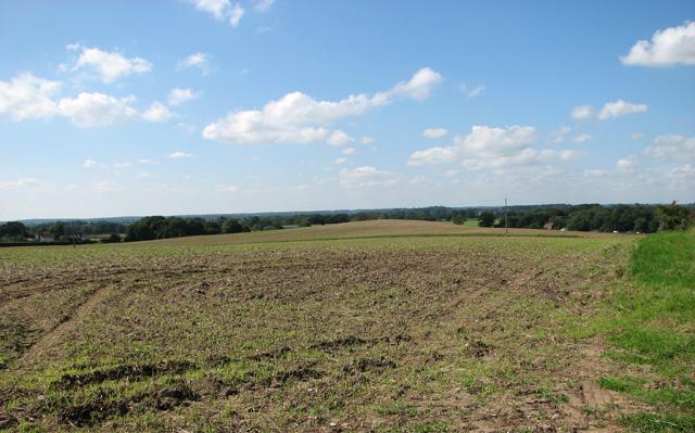 Fields north of Swanton Abbott Road
