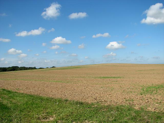 Undulating fields north of Swanton Abbott Road