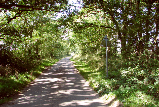 Minor road to Blackwater Corner