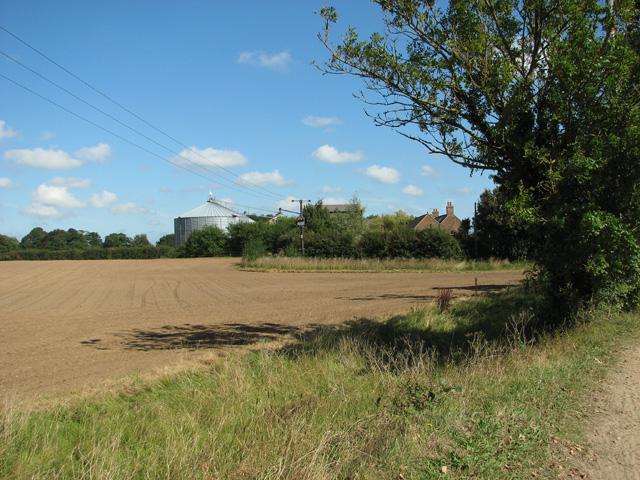 View towards Lower Farm, Tuttington