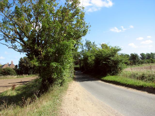 View along Beck Lane, Tuttington