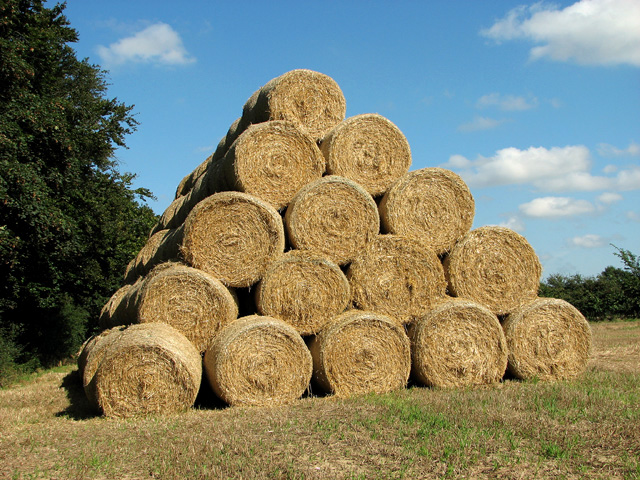 Straw bales neatly stacked