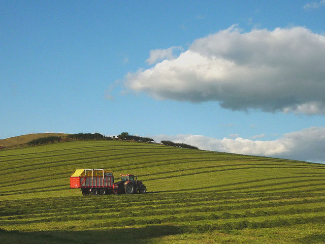 Harvesting grass on Cappleside Hill, Beetham