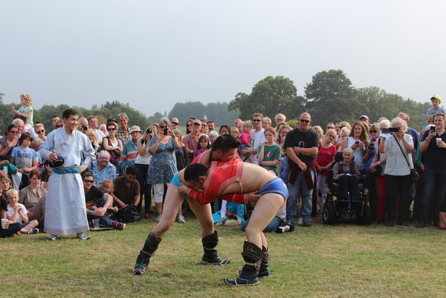 Mongolian wrestling at Hole Park