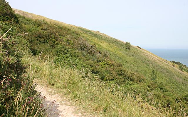 Studland Hill
