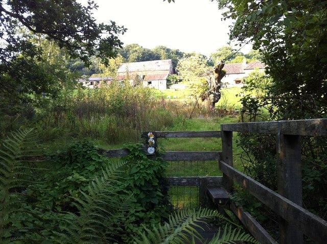 Hogchester Farm