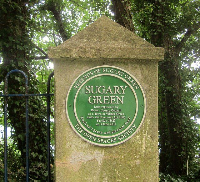Plaque, Sugary Green