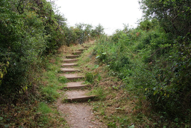 Steps on the coastal path