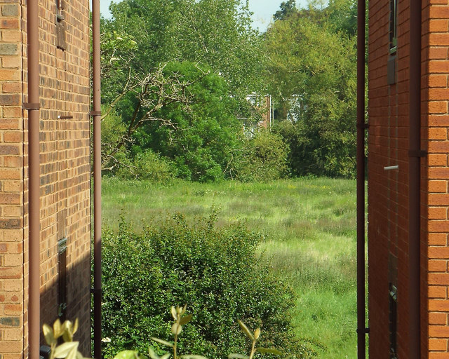 Glimpse of a floodmeadow from Holioake Drive, Myton, Warwick