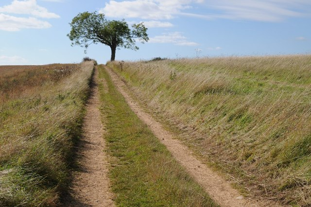 Track to the summit of Bredon Hill