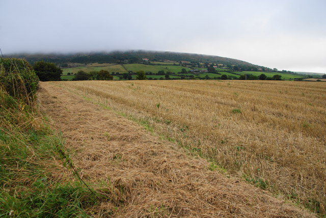 Harvested field near Stoupe Bank