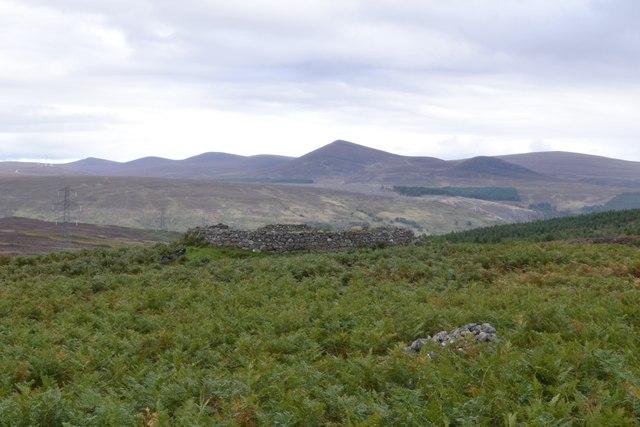 Sheepfold near Kilbraur in Sutherland