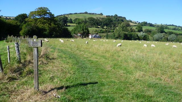 On Offa's Dyke Path near Newcastle-on-Clun