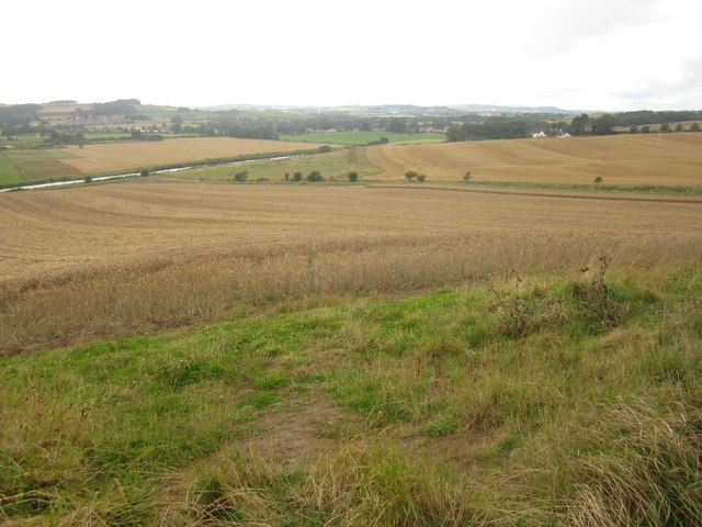 Arable land beside the River Aln