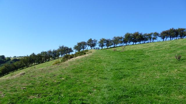 On Offa's Dyke Path north of Newcastle, Shrops