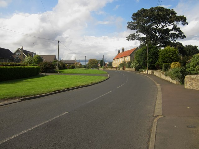 Road through Longhoughton