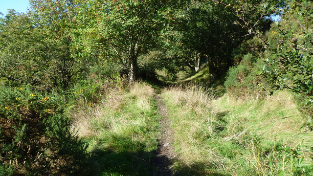 Part of Offa's Dyke Path