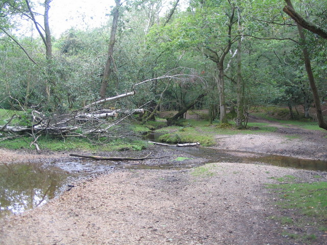 Streams in Perrywood Ironshill Inclosure