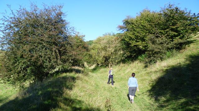 Summer walking on ODP
