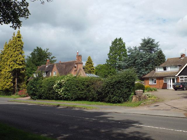 Remnant boundary hedge, Myton Road, Warwick