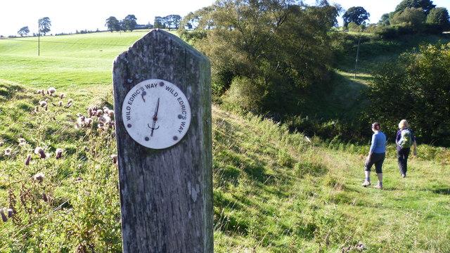On Wild Edric's Way and Offa's Dyke Path in summer