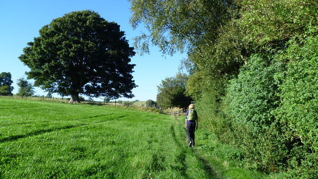 On Offa's Dyke Path in August