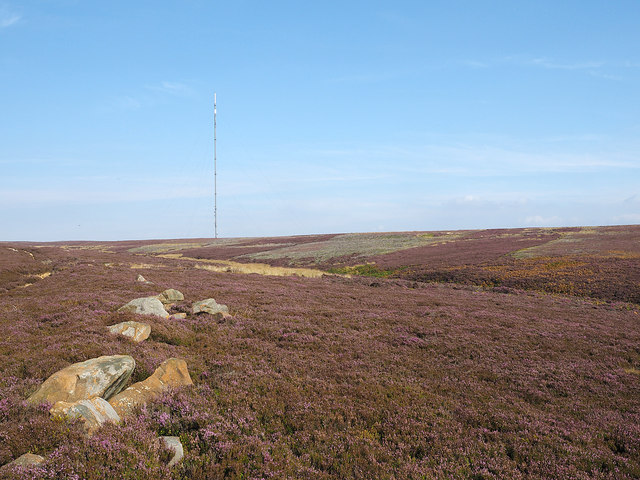 Rocks on heather moor