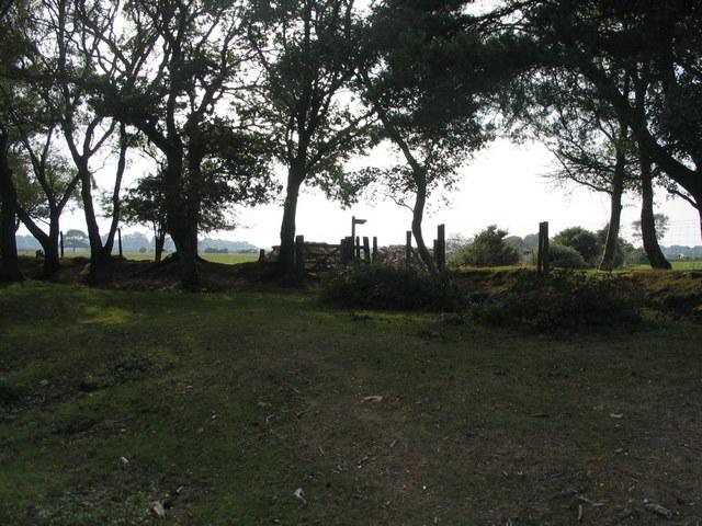 Bridleway gate, Beaulieu Heath