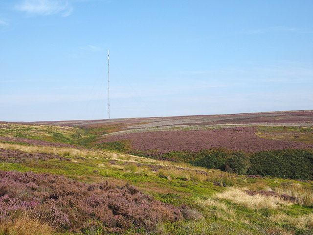 Heather moorland beside Parci Gill