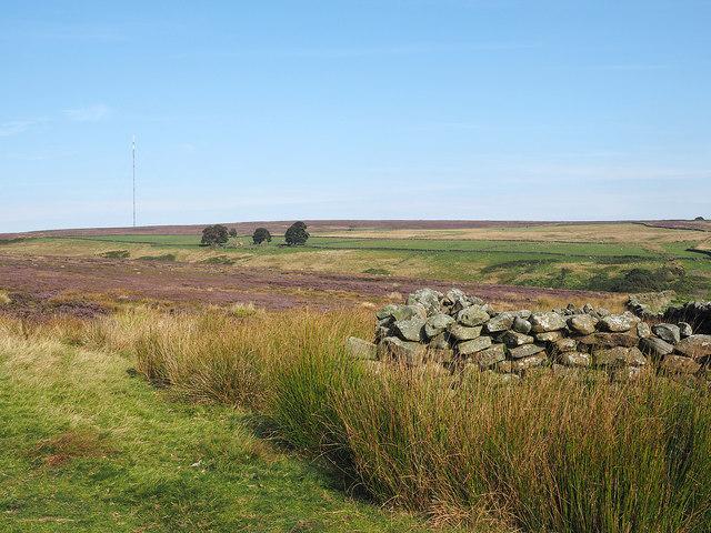 Moorland north of High Intake