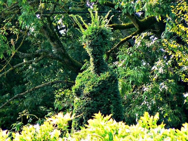 Green lady, Lacock, Wiltshire