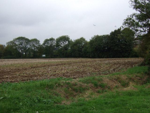 Farmland, Sudbrooke