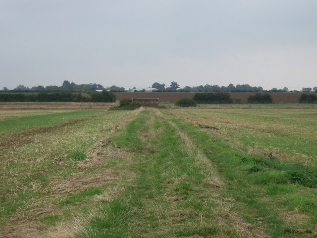 Track towards farm building