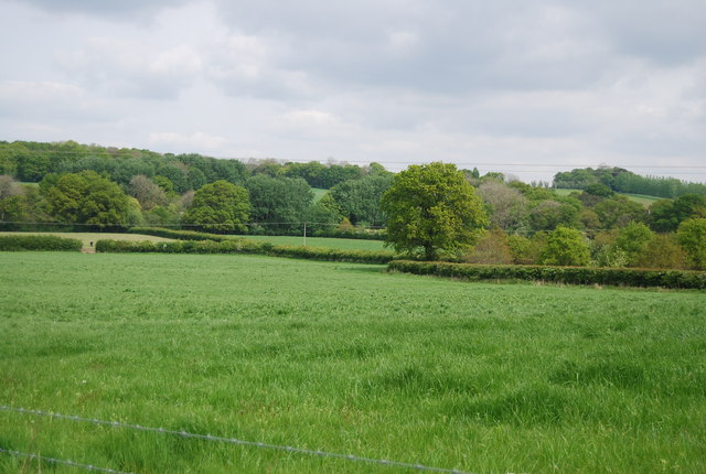 Farmland south of Sherlock's Wood