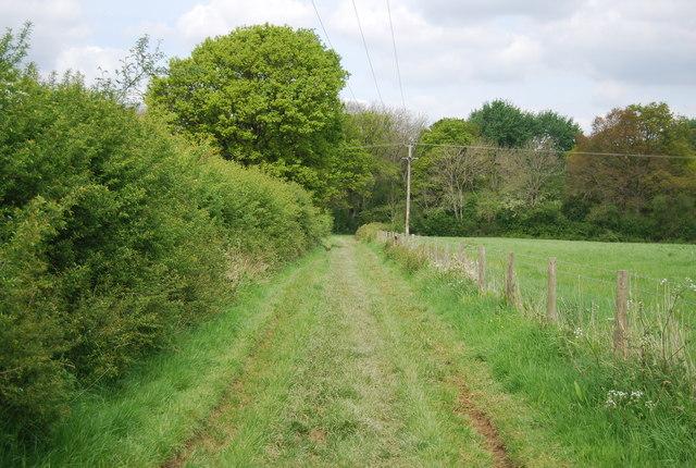Footpath to Sherlock's Wood